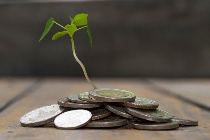 ecologie-economie1